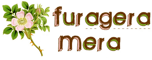 Furagera Mera
